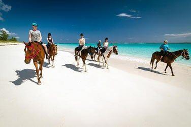 Profitez de ce paysage magique pour une balade à cheval sur la plage
