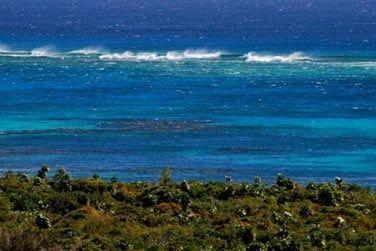 Les sites de plongée ne manquent pas avec la barrière de corail toute proche
