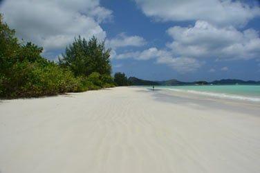 Sur la Côte d'Or à Praslin