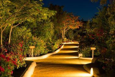 Le jardin tropical luxuriant au coeur de l'hôtel