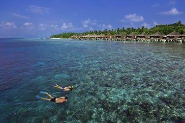 Les récifs coralliens sont très riches pour la plongée sous-marine