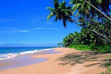 Les plages de sable blond du Sri Lanka