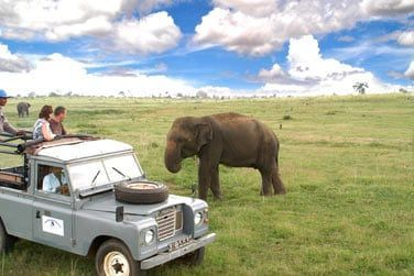 Safari en jeep dans le parc de Minneriya