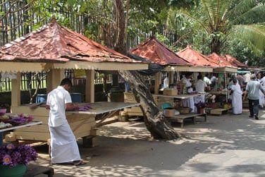 Stands pour acheter des fleurs qui serviront d'offrandes au temple de la Dent à Kandy