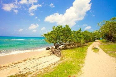 La plage située en contre-bas de l'hôtel et accessible à quelques minutes à pied