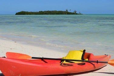 Louez un kayak et partez à la découverte du récif et de sa faune et flore marine