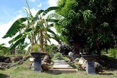 Promenez-vous au milieu des jardins tropicaux luxuriants...