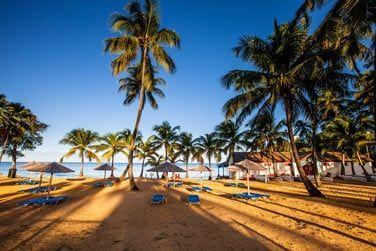 Lézardez au soleil sur la plage de l'hôtel