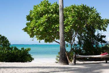 Relaxez-vous au son des vagues et de la brise marine...