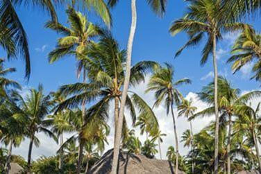 La villa plage