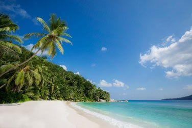 ... et le calme qui règne au bord de cette magnifique plage de sable blanc