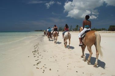 De nombreuses activités sont possibles sur l'île !