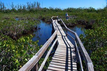 Découvrez la biodiversité de l'île lors d'une excursion en pleine nature