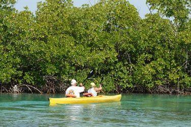 Découvrez la beauté naturelle de l'île lors d'une sortie en kayak...