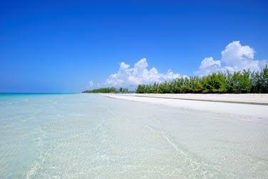 Envolez-vous ensuite vers l'île de Grand Bahama aux Bahamas !