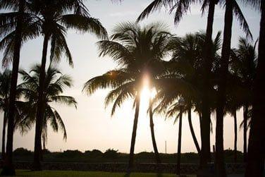 Découvrez la côte Est des Etats-Unis en totale liberté grâce au combiné Autotour Floride / Bahamas...