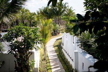 Situées au coeur du jardin tropical...