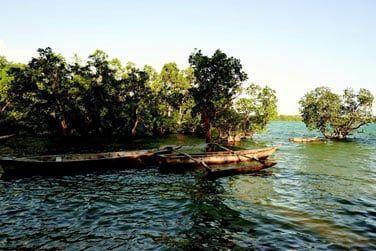 ... découverte des ruines de Jambangome et safari sur la rivière...