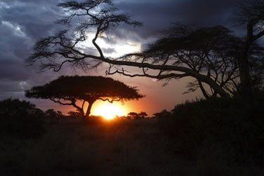 Un séjour hors du commun vous attend en Tanzanie !