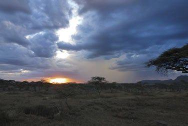 Vivez une expérience extraordinaire en Tanzanie...
