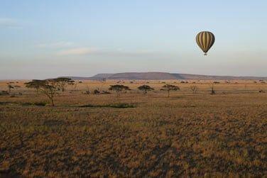 Bienvenue dans la vraie savane africaine