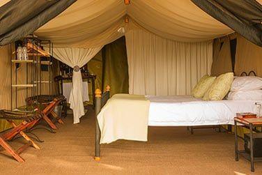 Confortablement installé sous votre tente, endormez-vous aux sons de la vie sauvage