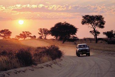 Direction ensuite le fameux Parc de Kruger
