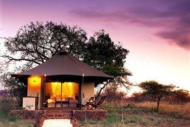 Endormez sous des tentes luxueuses au son de la vie sauvage