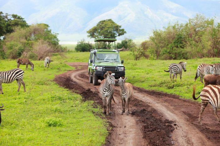 Zanzibar/Tanzanie du Sud - Détente & Parc de Saadani