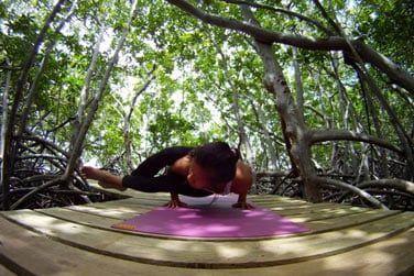 Séance de yoga au coeur du jardin tropical...