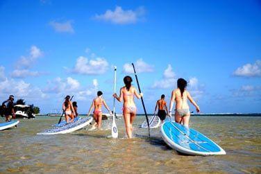 Paddle...