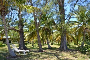 Prenez le temps de vivre sur cette île paradisiaque !