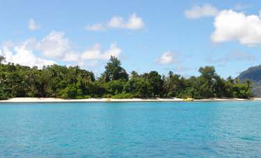 Bienvenue à l'Habitation Cerf Island