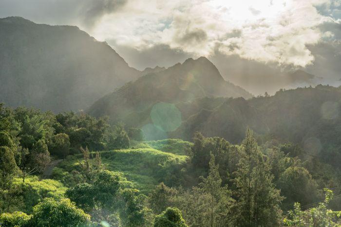 Chambre d'hôtes - Le Papangue, Réunion