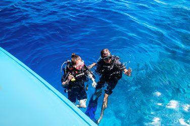Pour partir à la découverte des fantastiques fonds sous-marins.