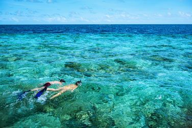La barrière de corail se situe à seulement 40m de la plage!