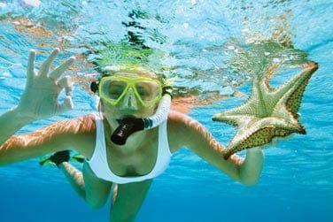 Prenez vos palmes, masque et tuba et plongez dans le lagon