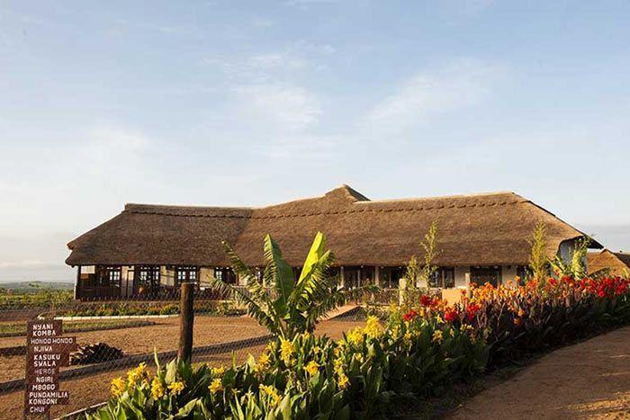 Hôtel Ngorongoro Farm House Valley, Tanzanie