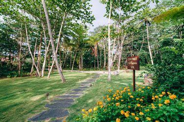 Le Spa se trouve dans un cadre verdoyant pour vivre une véritable expérience au cœur de la nature !
