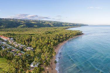 La nature luxuriante au bord d'une magnifique plage!