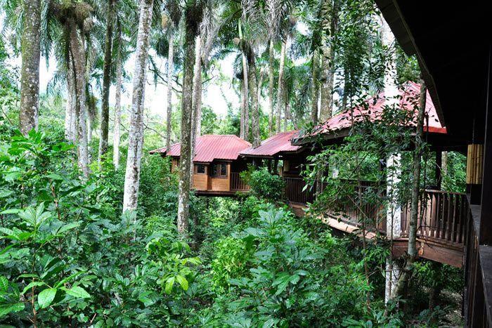 Hôtel Rancho Platon 3*, République Dominicaine