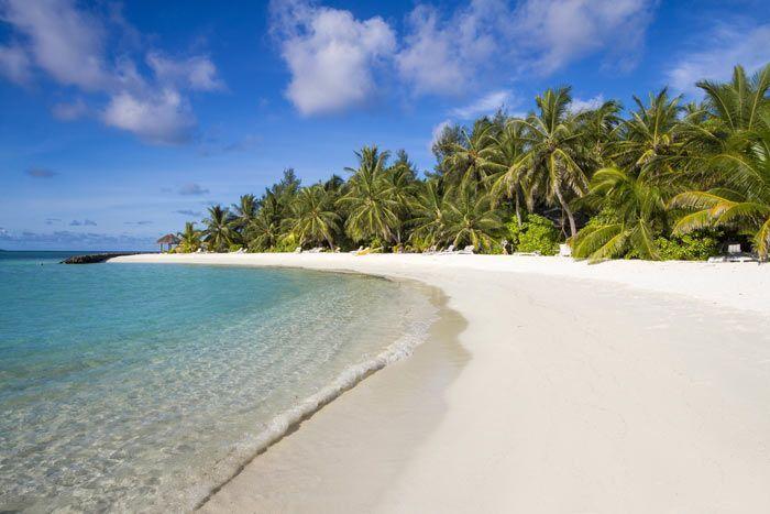 Hôtel Summer Island 4*, Maldives