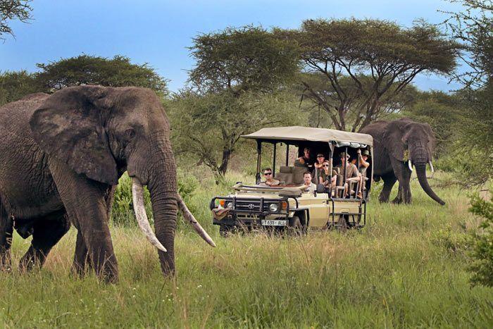 Safari de luxe en Tanzanie 5*