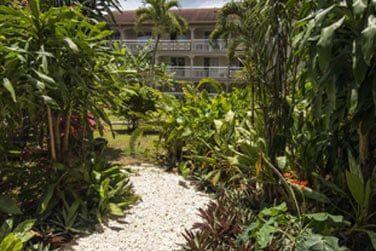 L'hôtel se niche au coeur de beaux jardins paysagés