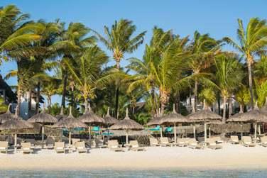 Au programme : Farniente sur la plage bordée de cocotiers