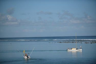 Différentes activités nautiques sont proposées par l'hôtel...