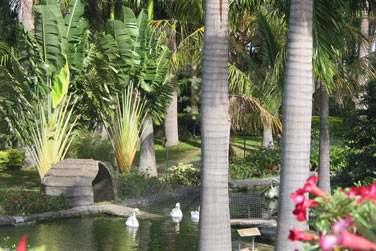 ... Le parc Exotica fera le bonheur des petits et grands. Une très belle balade !