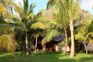 Les petits pavillons cachés dans la nature abritent les Chambres et Suites