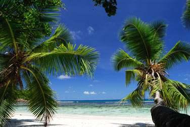 Situées en bordure de la superbe plage de Grande Anse sur l'île de Praslin aux Seychelles