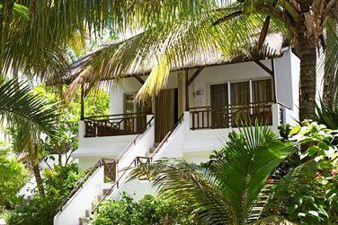 Au coeur du jardin tropical, découvrez les charmants bungalows au toit de chaume